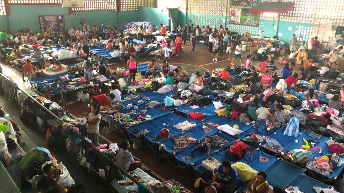 Colecta y entrega de acopio en Guatemala
